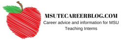 banner for msutecareerblog.com, which is a site that provides advice and information for MSU teaching interns